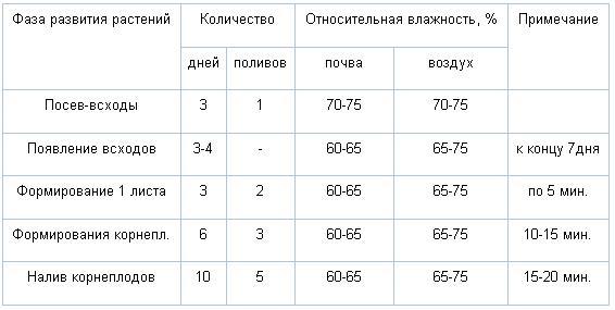 Количество поливов в зависимости от фазы развития редиса.