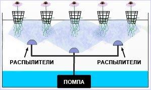 Гидропоника GrowHobby.ru