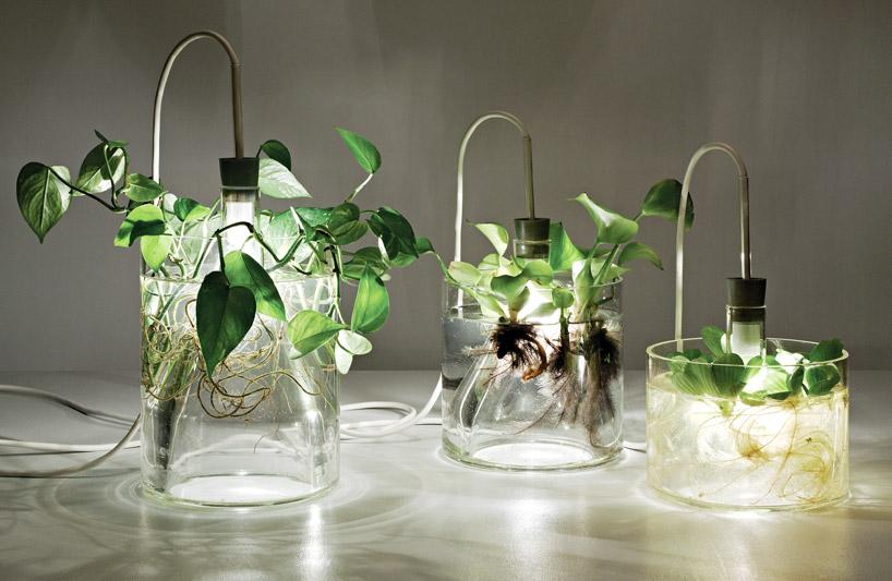 фитолампы для выращивания рассады и растений